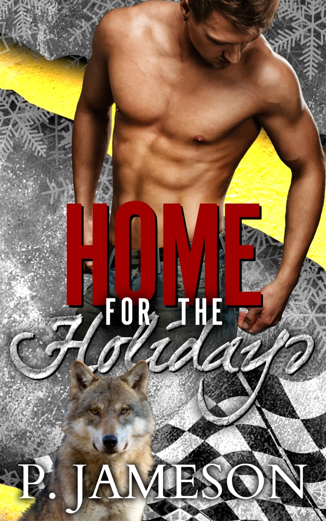 Holidays Ebook